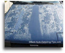 Car clear coat and the facts you won't read anywhere else